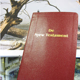 Gullah Bible: De Nyew Testament