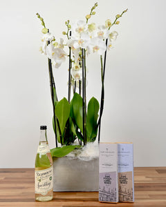 Orchids, Sparkling Elderflower & McCambridges Chocolate