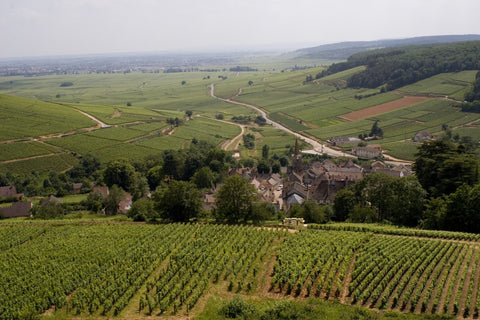 Tour of France- Burgundy- Thursday, October 26; 6-9pm
