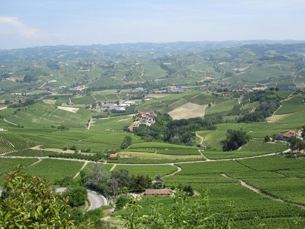 Around the World in Wine - Northern Italy, Thursday January 24, 6-9pm