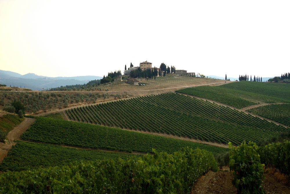 Around the World in Wine - Central Italy; Thursday February 21, 6-9pm