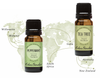 Go On An Adventure With Peppermint & Tea Tree Around The World Oils