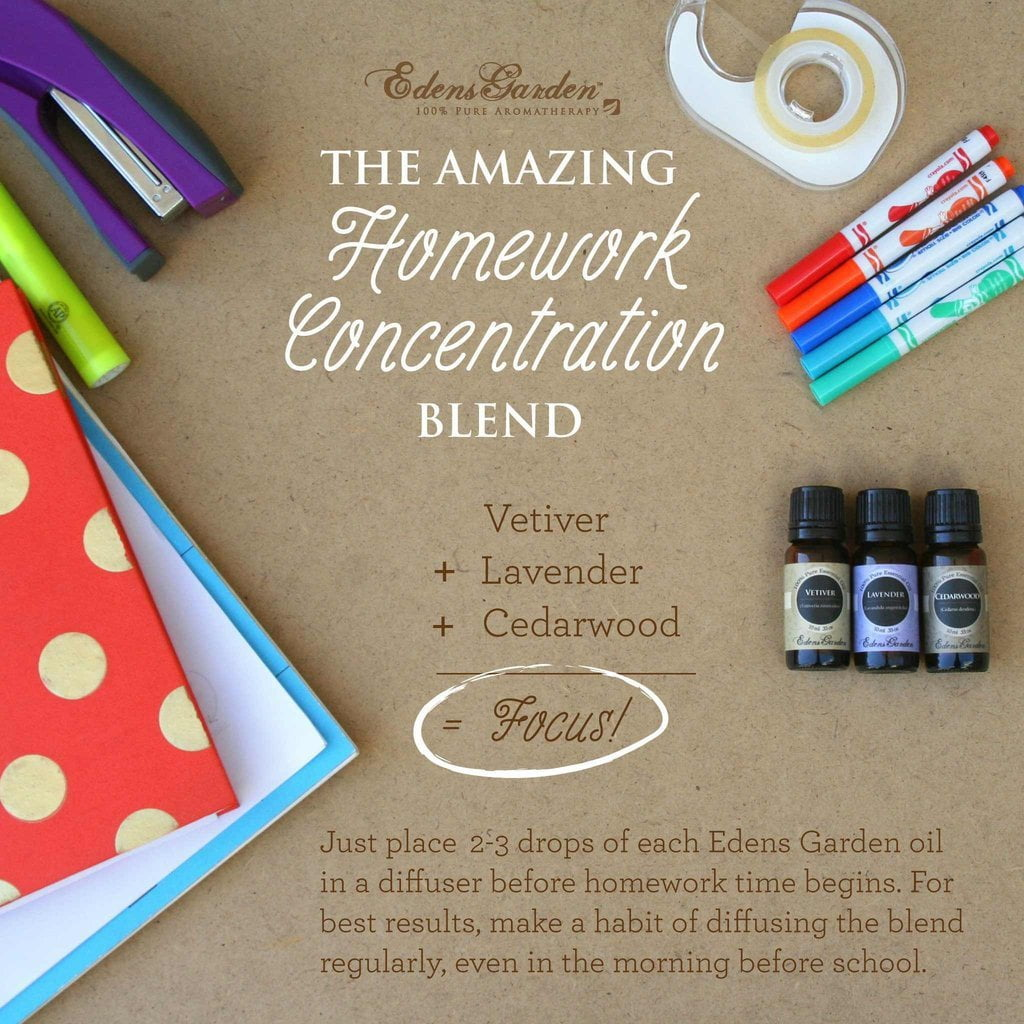 The Amazing Homework Concentration Blend Essential Oils For Focus