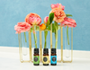 The Best Essential Oils for Spring Cleaning