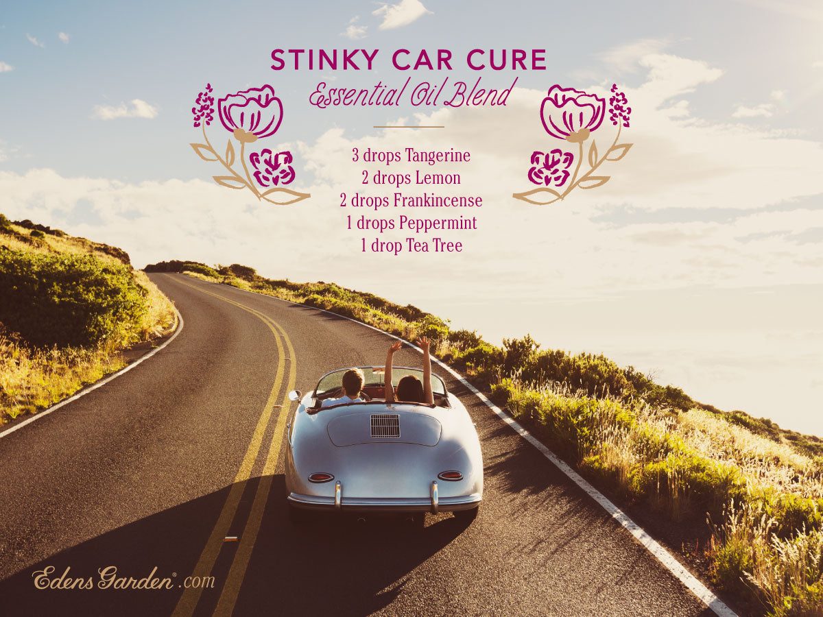 stinky Car Cure - essential oil blend by Edens Garden