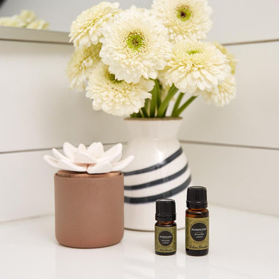 Taupe ceramic bloom diffuser for essential oils by Edens Garden