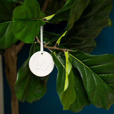 Hanging Ceramic Stone Diffuser with 5ml Cedarwood Spruce essential oil blend hanging from fig tree branch by Edens Garden