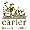 Carter Ranch Horse