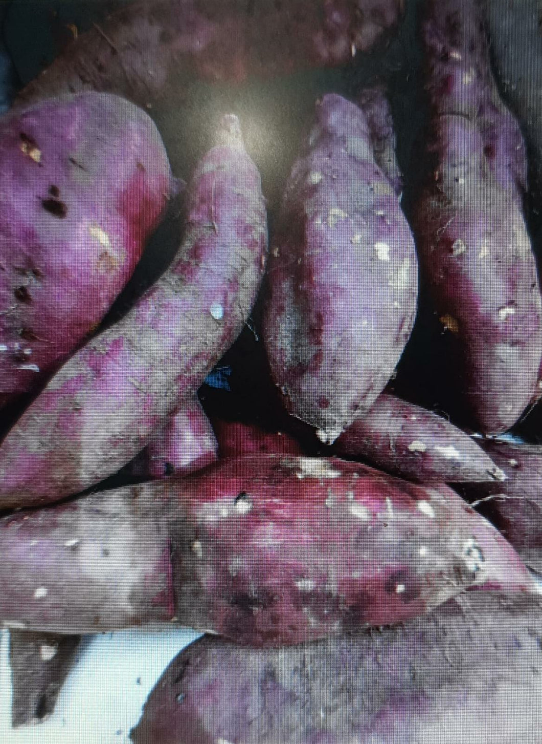 Japanese Sweet Potato (Vietnam) 500g