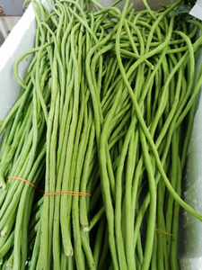 Long Beans (Malaysia) 400g