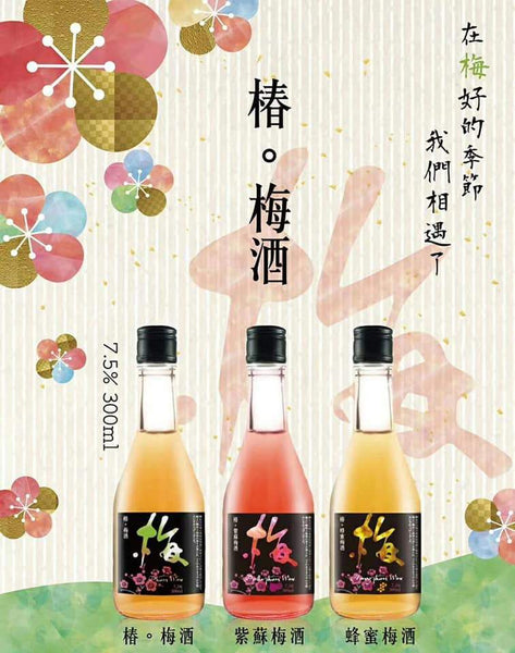 台灣原味梅酒 Plum Wine - lifebuyhk