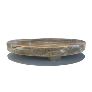 Petrified Wood Trivet with Polished Edge