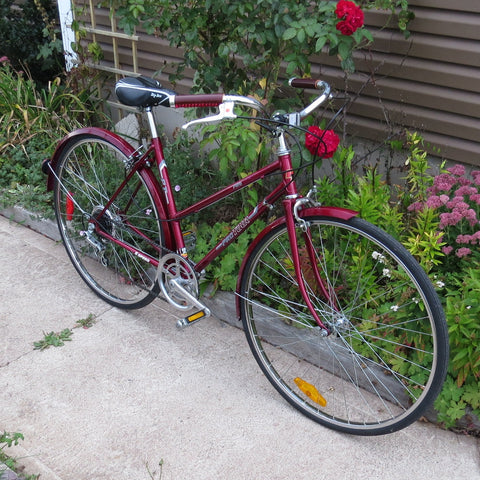 1985 ProTour 6 Speed - Sold!