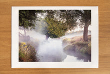 Load image into Gallery viewer, Hints of Autumn Richmond Park Print