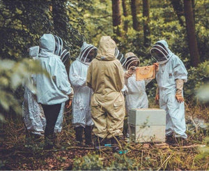 Local Beekeeping Experience (2021 Season)