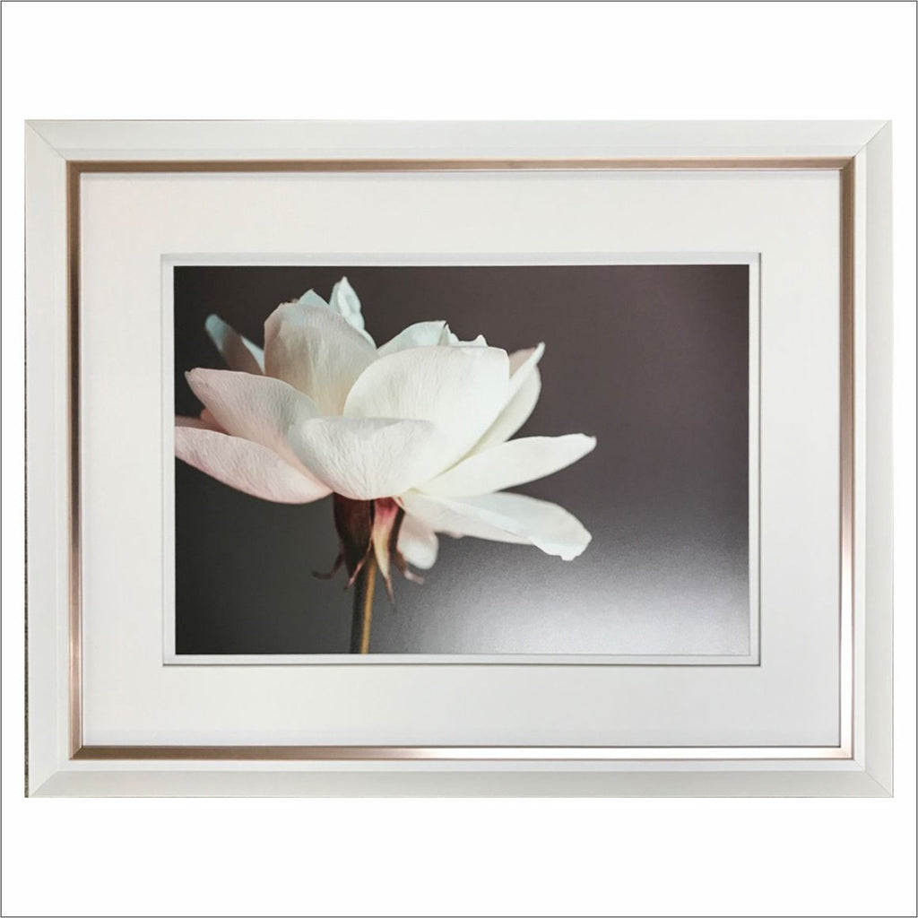 Sweet Magnolia - Object Framers, Object Framers - Picture Framer Perth