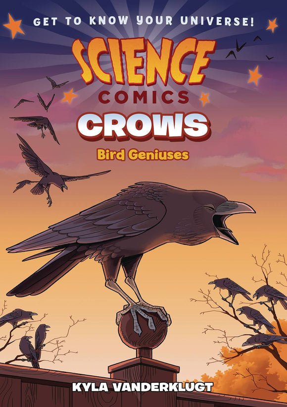 Science Comics Crows Genius Birds Gn
