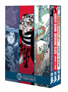 Dc Graphic Novels For Young Adults Box Set - Books