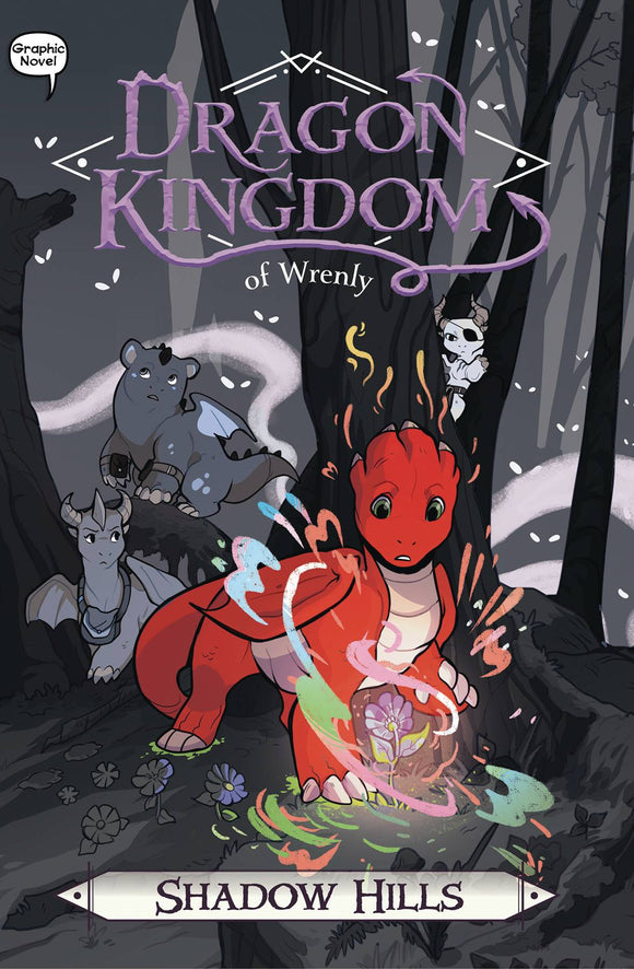 Dragon Kingdom of Wrenly GN Vol 02 Shadow Hills - Books