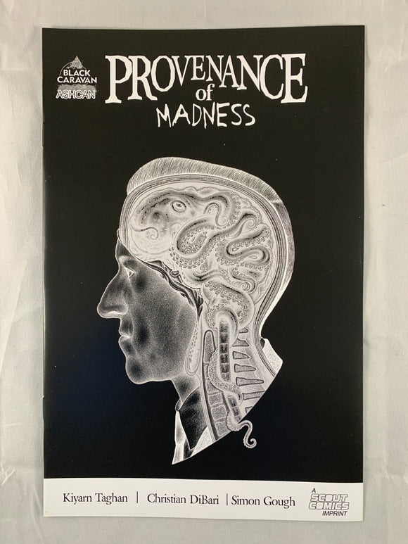Provenance of Madness Ashcan Preview