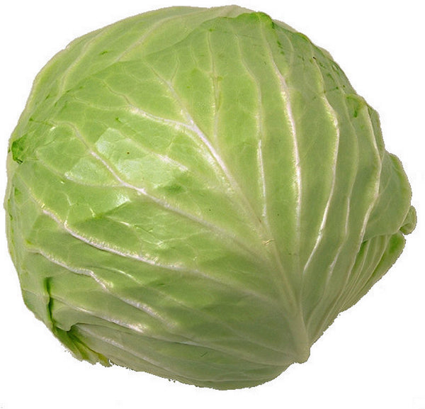 CABBAGE - EACH