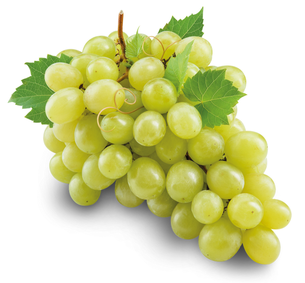 WHITE GRAPES (LB)