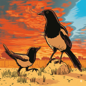 Magpie Family Sunset art print