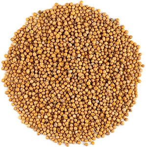 Mustard seeds, yellow (100g)