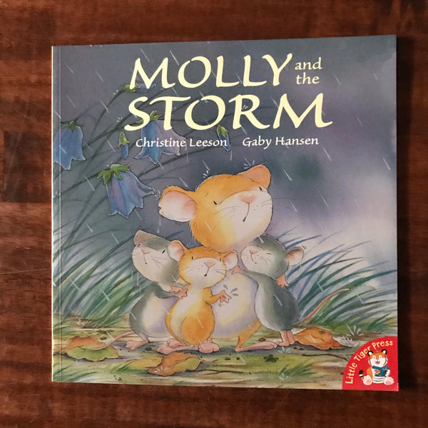 Leeson, Christine - Molly and the Storm (Paperback)