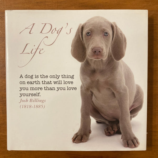 Bizzybee - Dog's Life (Hardcover)