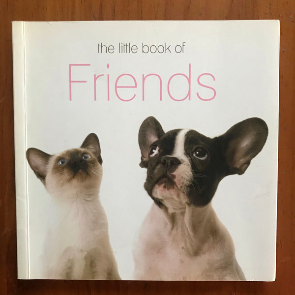 In Good Company - Little Book of Friends (Paperback)