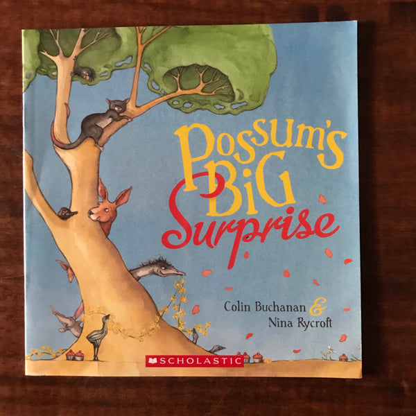 Buchanan, Colin - Possum's Big Surprise (Paperback)
