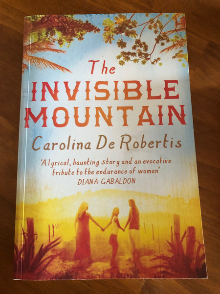 De Robertis, Carolina - Invisible Mountain (Trade Paperback)