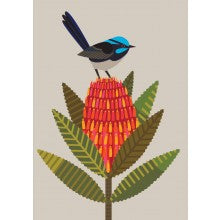 Greeting Card - Fairy Wren