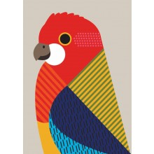 Greeting Card - Rosella