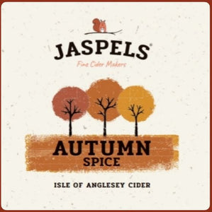 Jaspels Cider Autumn Spice Welsh Alcohol