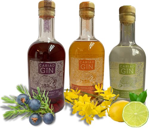 Cariad Gin Welsh Alcohol