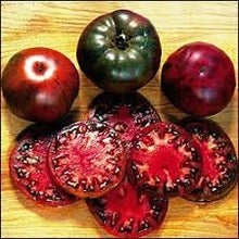 Load image into Gallery viewer, Black Krim Tomato Start