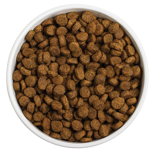 COMING SOON | Grain-Free Sky Recipe Dog Food Redbarn Pet Products