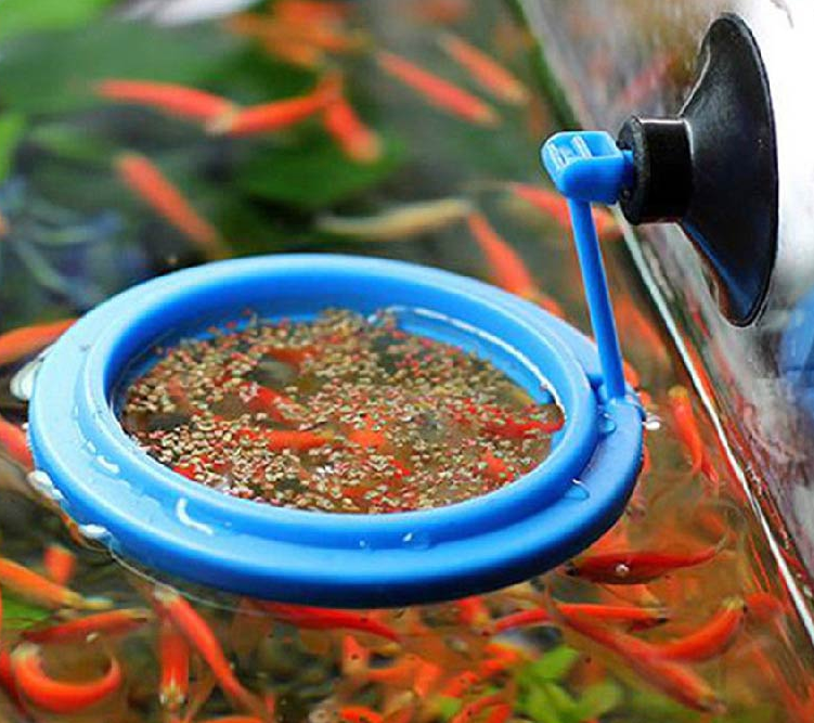 Floating Fish Food Tray