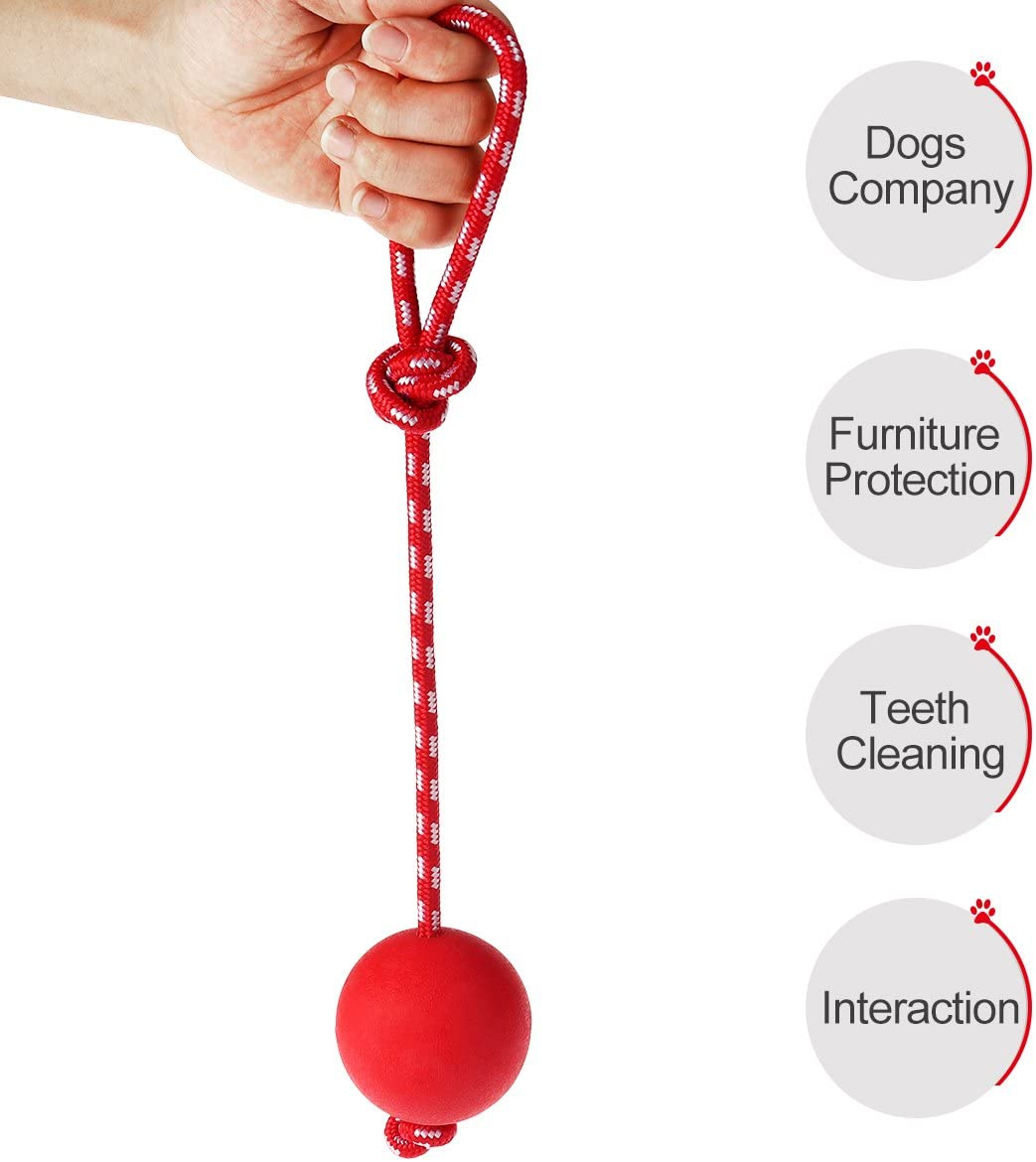 FurBaby™ All-In-One Anti-Anxiety Energy Release Toy For Dogs