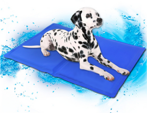 Pet Cooling Mat — Help Our Furry Friends Beat The Heat!