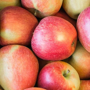 Apple Braeburn Semi
