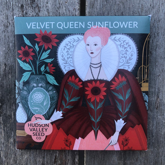 Velvet Queen Sunflower Seed Packet