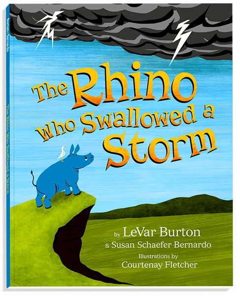 The Rhino Who Swallowed a Storm, Paperback