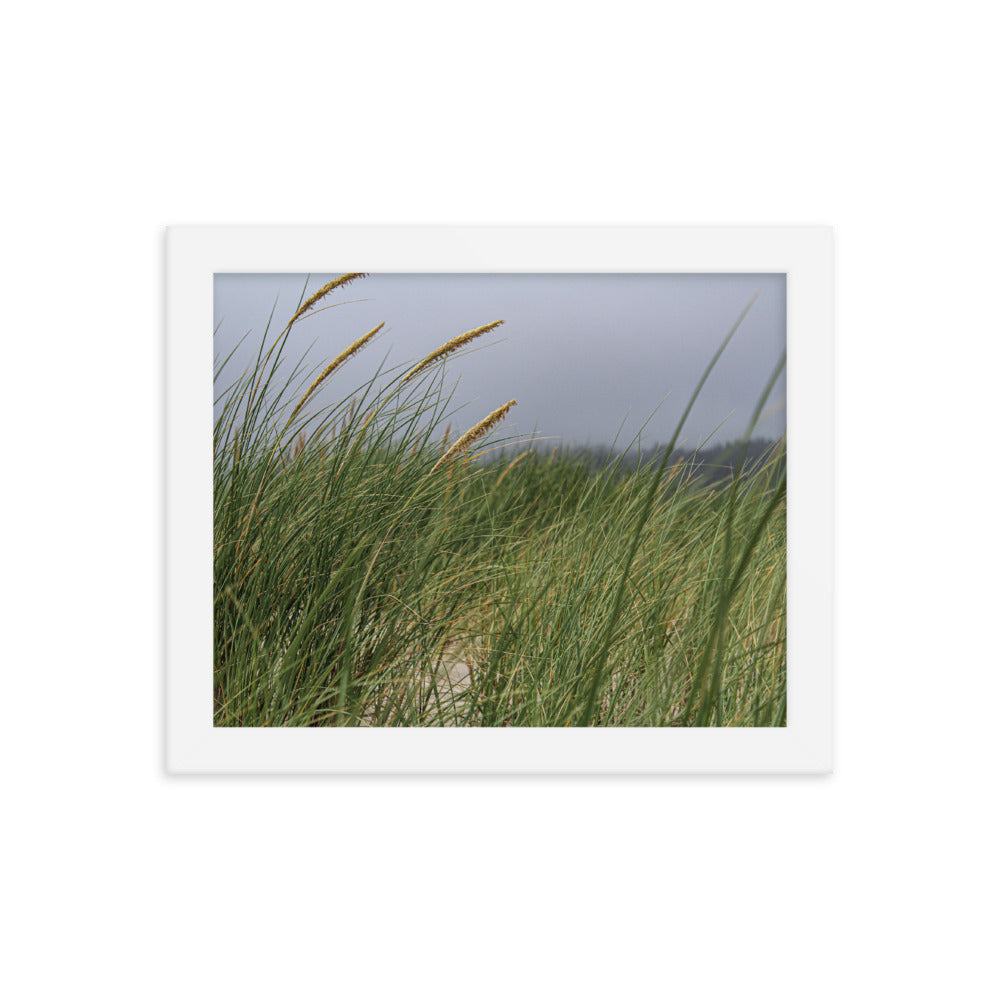 seagrass wall art wall decor photography