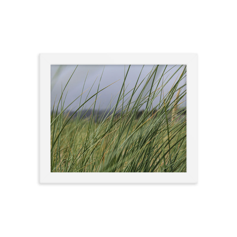 Seagrass (1) framed photo paper poster