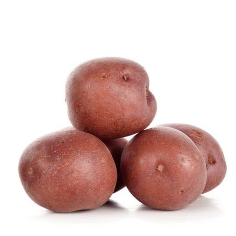 Potatoes Red Washed
