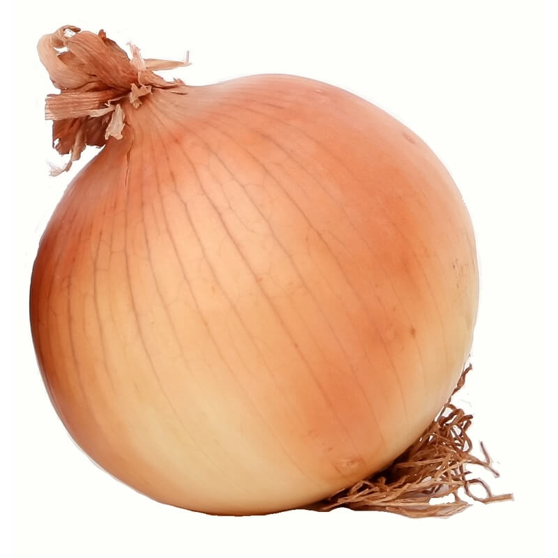 Onion - Large (each)