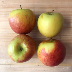 Apple - Braeburn x 4